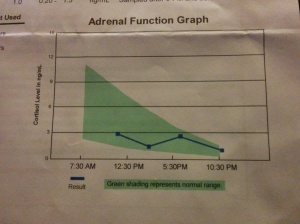 Fig 1 My Cortisol levels during the day