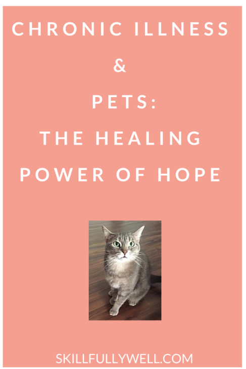 Chronic illness and pets